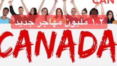 Photo of كندا تمنح الإقامة الدائمة للمهاجرين العاملين لديها خلال جائحة كورونا
